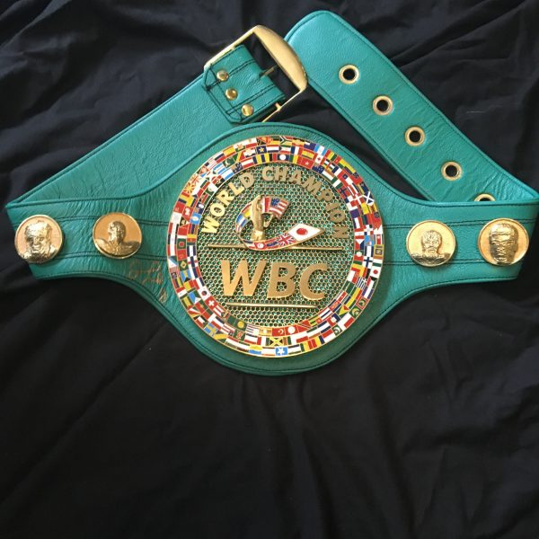 fb_wbc_belt_1-min